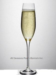 webassets/champagneFlute.jpg